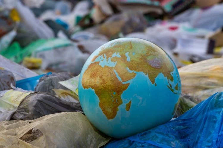 Экологическая проблема
